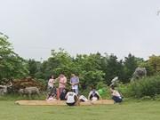 室外学习模式为增强学生的环保意识做出贡献