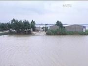 越南多地继续遭暴雨洪水袭击