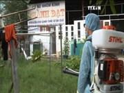 胡志明市成立6个检查团  加强寨卡病毒防控工作