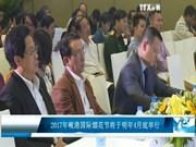 2017年岘港国际烟花节将于明年4月底举行