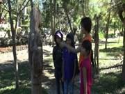 嘉莱省复活嘉莱省族与巴拿族的民间木雕工艺