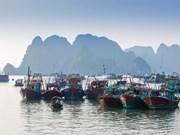广宁省诗篇山背后早晨的鱼市场(组图)