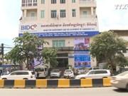 越南同柬埔寨致力于发展双方合作关系