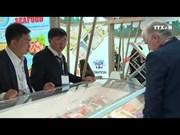 越南查鱼对欧盟出口活动呈现显著增长势头