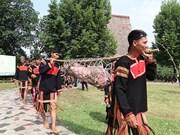 组图:嘉莱族同胞独具一格的新隆屋神祭祀仪式