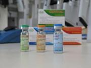 组图:越南研制的 Covivac 疫苗生产流程