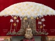 组图:菩提叶拼贴画——富有心灵文化意义的艺术作品