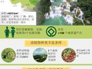 图表新闻:高平山水 越南第二处世界地质公园