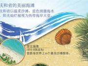 图表新闻:庆和省的美丽海滩