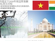 图表新闻:越南与印度定下2020年双边贸易额达到150亿美元目标