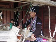 组图:莱州省努力保护傣仂族同胞传统织锦手工业