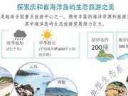 图表新闻:探索庆和省海洋岛屿生态旅游之美