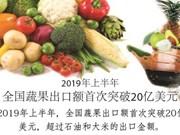 图表新闻:全国蔬果出口额首次突破20亿美元