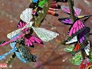 竹蜻蜓—越南乡村的独特礼物(组图)