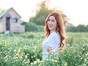 河内美女在雏菊花园里展现甜美迷人的微笑(组图)