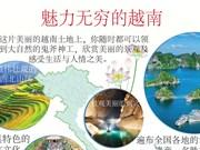 图表新闻:魅力无穷的越南