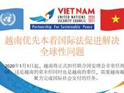 图表新闻:越南优先本着国际法促进解决全球性问题