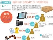 图表新闻:越南出口总额30亿以上的8种商品