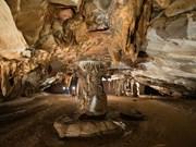 越南旅游:广平省天堂洞再次创下新纪录(组图)