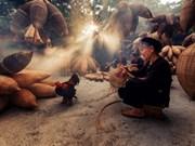 探访越南兴安省有着两百年历史的黄鳝笼编织传统村(组图)