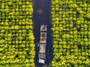 三江泻湖有趣的目的地——广利潭(组图)