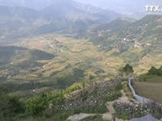 促进旅游业发展  帮助地方居民走向致富之路