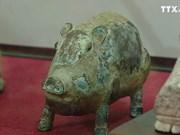 """""""我的生肖-富裕之猪""""展览会亮相河内"""