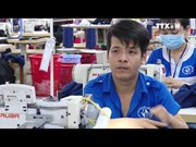 越南政府总理批准CPTPP实施计划