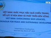 越南是努力解决战争遗留问题并快速走上新发展时期的典范