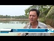 九龙江三角洲多措并举夯实适应气候变化之基