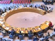 越南支持终止冲突中的性暴力行为