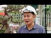 越南煤炭矿产工业集团加大第二季度生产销售力度