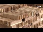 EVPTA为越南木材加工业带来可持续发展机会