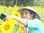 广南省旅游业多管齐下主动适应'新常态'