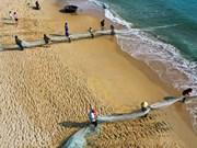 组图:岘港市渔民在沙滩拖网捕鱼  场面竟如此壮观