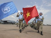 组图:越南在国际舞台上的地位日益提升