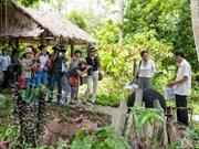 UNESCO建议芹苴市引进社区旅游模式