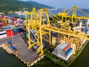 岘港港口货物吞吐量达700万吨