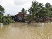 越南外交部为中部以南及西原地区受洪灾影响群众发起募捐