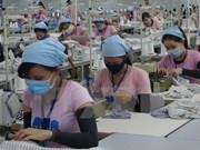 2016年越南出口努力越过困难