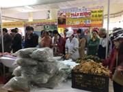 越南年终农产品展销会在河内开展