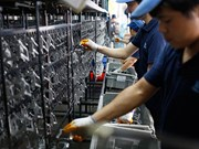 1月1日起马来西亚雇主须承担外劳人头税