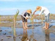 越南积极参加东盟有关环境保护的活动