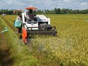 河南省农业加大高新技术引进力度