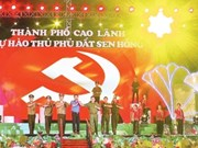 越南各地举行多项庆党迎春的活动