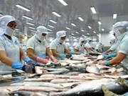 越南查鱼出口企业应集中开发亚洲市场
