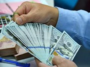 9日越盾兑美元中心汇率较前一日上涨12越盾