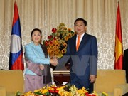胡志明市领导人会见老挝国会主席巴妮·雅陶都