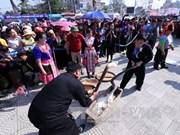 色彩缤纷热闹非凡的2017年洋紫荆花节留住游客的脚步
