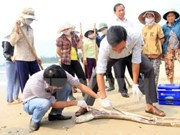 张和平副总理:力争6月底彻底完成中部四省海洋环境事故赔偿工作